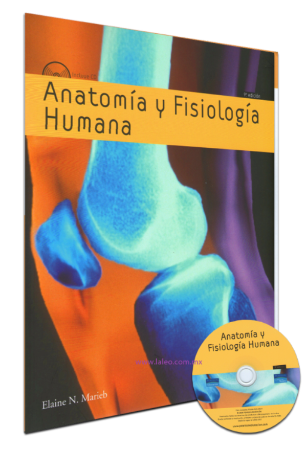 Único Descarga Gratuita Anatomía Humana Libro Pdf Colección ...