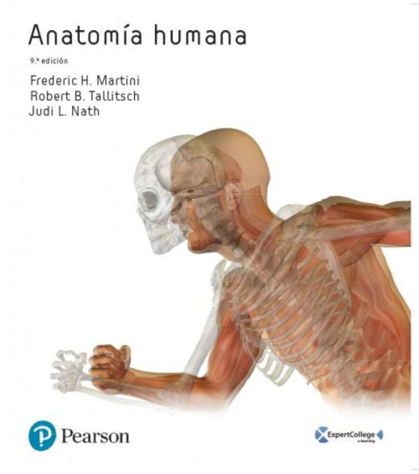 Martini. Anatomia humana