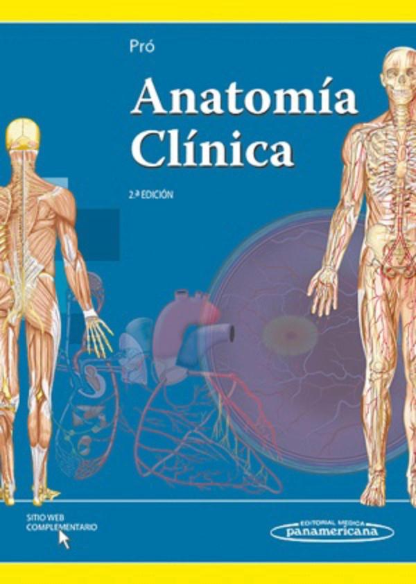 Pro. Anatomia Clinica