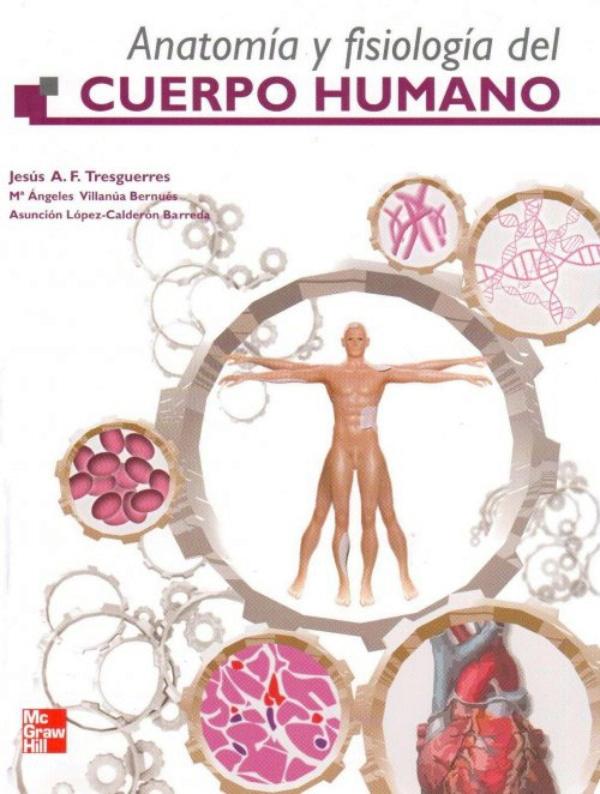 Lujo Anatomía Y Fisiología Libro Mcgraw Línea Colina Colección ...