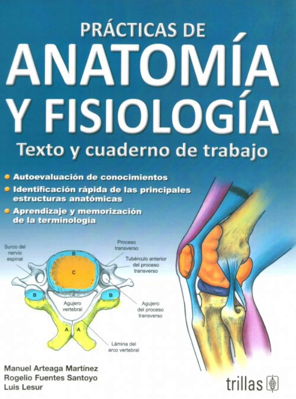 Arteaga . Practicas de anatomia y fisiologia. Texto y cuaderno de ...