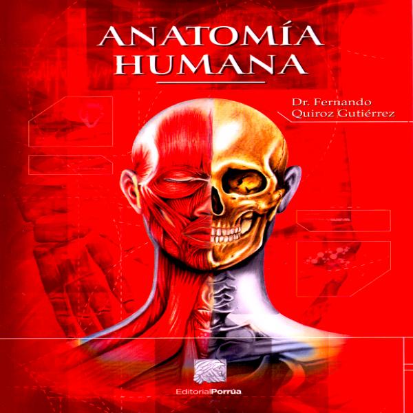 Quiroz. Anatomia Humana 3 Volumenes