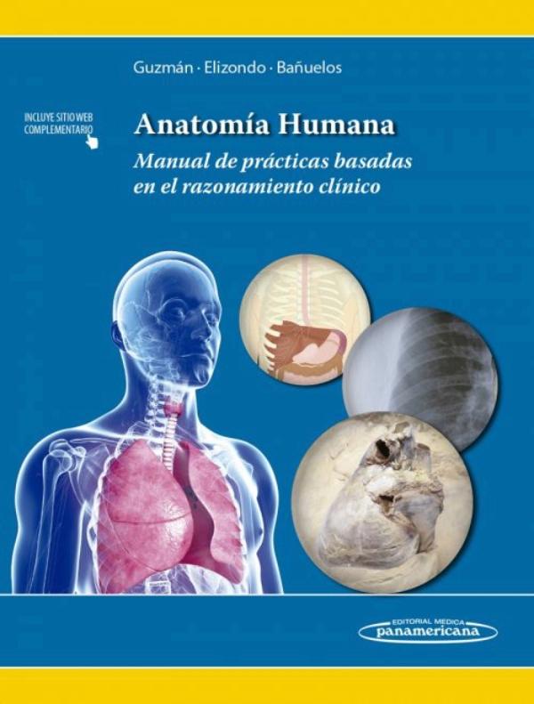 Guzman. Anatomia Humana