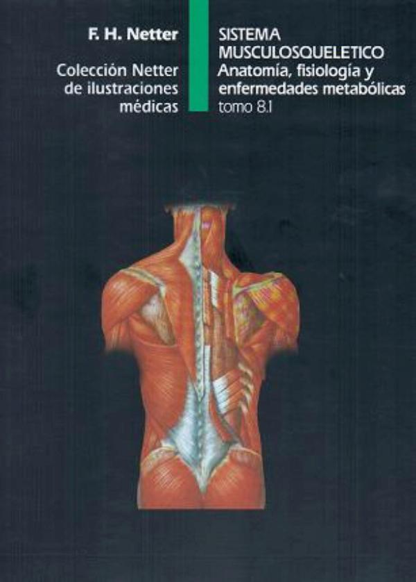 Coleccion Netter de ilustraciones medicas: Sistema Musculosqueletico ...