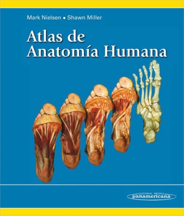 Nielsen. Atlas de anatomia humana