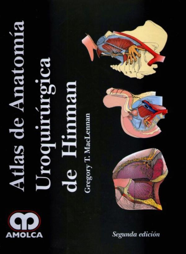 Increíble Anatomía Regalos Revisiones De Registro Molde - Imágenes ...