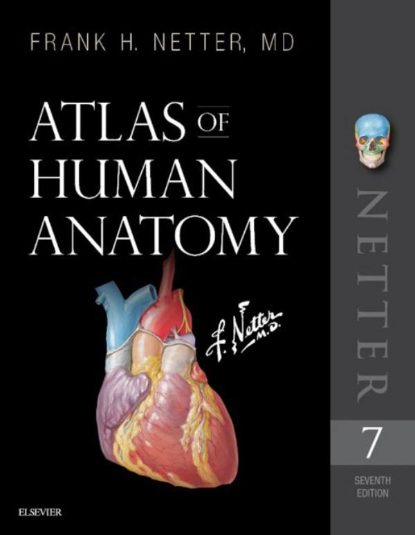 atlas of human anatomy pdf free