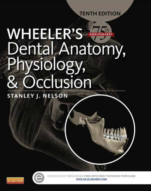 Wheeler\'s Dental Anatomy, Physiology and Occlusion (ebook)