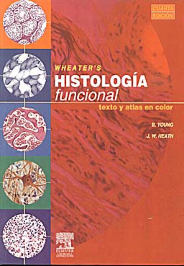 Histologia funcional wheater
