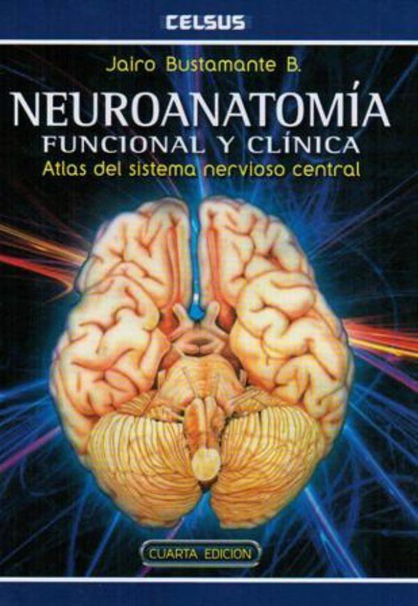 neuroanatomia funcional