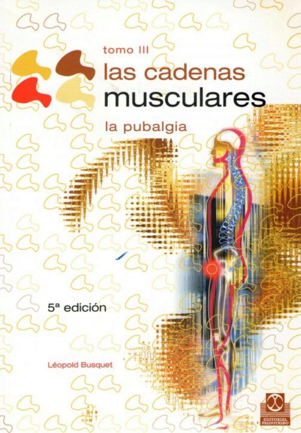 Estiramientos De Cadenas Musculares Pdf Download