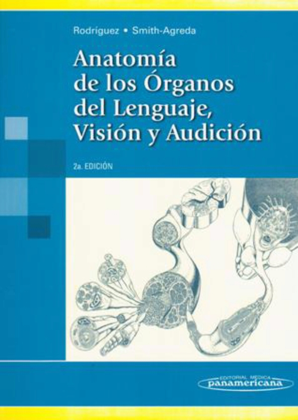 Famoso Anatomía Y Fisiología De Los órganos Del Habla Regalo ...