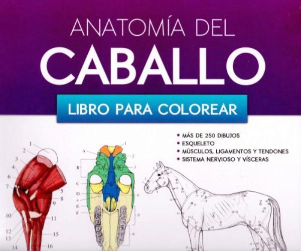 Raynor. Anatomia del caballo