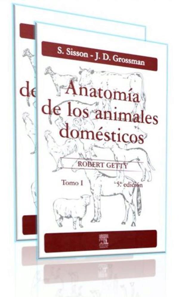 Sisson. Anatomia de los animales domesticos 2 Tomos